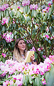 "22/01/19<br /> <br /> Garden curator Rebecca Emery (26) records the early flowering of a mature 'Robyn' rhododendron at Lea Garden, near Matlock, Derbyshire. <br /> <br /> Garden and collection owner Pete Tye said: ""This variety  normally flowers in mid-March but is flowering at least two weeks earlier than usual due to the unusual warm start to spring - it's the earliest we've seen them flower since we began keeping records fifteen years ago.<br /> <br /> ""It's great to see the signs of spring and hopefully the winter is behind us now, but a frost could be catastrophic for the flowers.""<br /> <br /> Lea Gardens opens to the public on March 1st.<br /> <br /> All Rights Reserved, F Stop Press Ltd +44 (0)7765 242650  www.fstoppress.com rod@fstoppress.com"