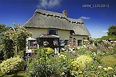 Tom Mackie, FLOWERS, photos, Thatched Cottage & Garden, Suffolk, England, GBTM110125-1,#F# Garten, jardín
