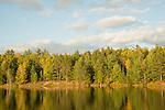 AuSable River autumn