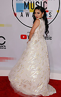 LOS ANGELES, CA - OCTOBER 09: Tina Guo attends the 2018 American Music Awards at Microsoft Theater on October 9, 2018 in Los Angeles, California.  <br /> CAP/MPI/IS<br /> ©IS/MPI/Capital Pictures