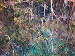 carwash cenote, yucatán, mexico