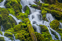 Umpqua National Forest, OR: Detail of Clearwater falls flowing over moss covered boulders