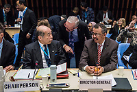 The opening session of the Executive Board Meeting of the World Health Organisation, the UN's health body, at the organisation's headquarters in Geneva. The annual event is taking place in the shadow of the Corona virus outbreak, which the WHO has declared as global health emergency.  The organization's Director-General Dr. Tedros Adhanom Ghebreyesus at right, next to the board's chairman Dr Hiroki Nakatani of Japan.
