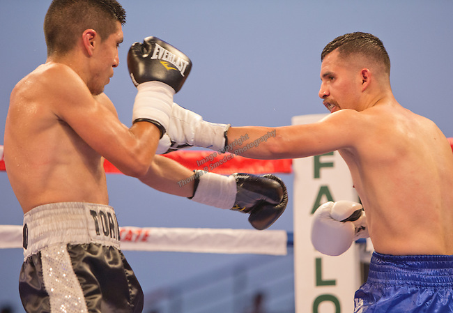 """Oscar """"Chapito"""" Vasquez, from Reno, NV, (blue shorts) fights Jose Toribio, from San Diego, CA, (black shorts) in the Flyweight division of the 2015 Rural Rumble held at the Churchill County Fairgrounds in Fallon, Nevada on Saturday, August 22, 2015.  Vasquez won the bout with a 7th round knockout."""