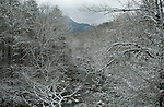 Winter, Little Pigeon River, Great Smoky Mountains NP