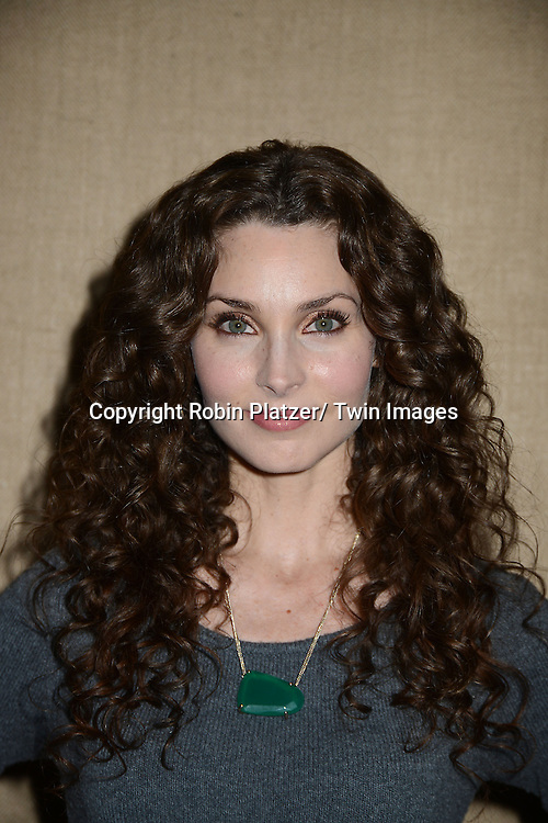 "Alicia Minshew attends the Ricky Paull Goldin premiere party and fundraiser for his new HGTV show ""Spontaneous Construction"" which will air on February 15, 2013. The party was on February 10, 2013 at Guy's American Kitchen in New York City."