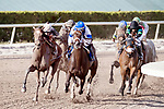 HALLANDALE BEACH, FL - MAR 31:Coach Rocks #2 (far left) trained by Dale L. Romans with Luis Saez in the irons swings wide along the final turn on the way to winning The Gulfstream Park Oaks Stakes (G2) at Gulfstream Park on March 31, 2018 in Hallandale Beach, Florida. (Photo by Bob Aaron/Eclipse Sportswire/Getty Images)