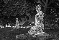 "Houston Tolerance Art in BW -  Fine Art Metal images  -  Tolerance is the name of a group of seven art sculptures in Buffalo Bayou Park at the intersection of Allen Parkway and Montrose Boulevard.  Their silvery metal sculptures consists of alphabetic symbols from languages around the world and they are kneeling on piece of granite.  At night the statues are lit from inside making them stand out as you go by.  The artist Jume Plensa believed that, ""whatever culture we live in and whichever language we think in, our lives are similar"". This image in black and white taken at night with the sculptures lit from within and  kneeling on a piece of granite seven in a row at the entrance of the Rosemont Bridge.  They were dedicated on 2011 and given the name Tolerance.  I think this piece would look awesome on a metal wall art."