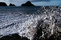 Surf splashes up on shore along the rocky coast of northern California. The thick salt spray looks like milk.
