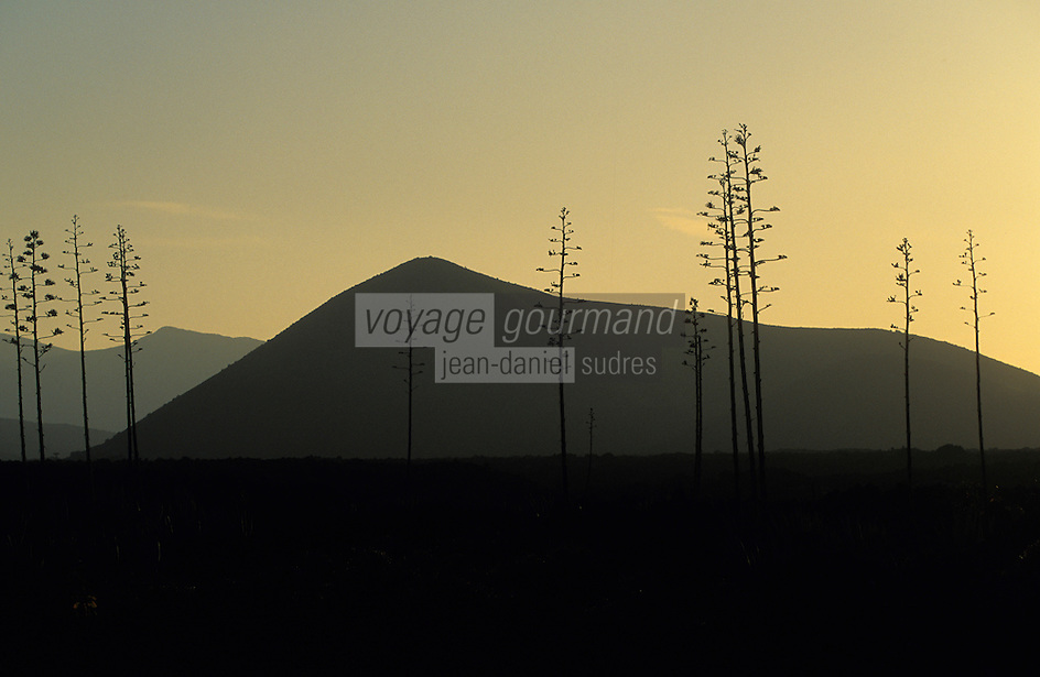 """Europe/Espagne/Iles Canaries/Lanzarote : Paysage volcanique des """"Montanas del Fuego"""""""