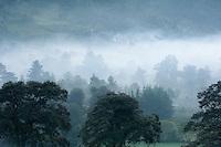 Early morning mist in the Acul valley near Nebaj.