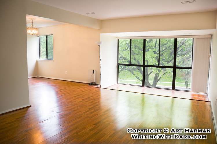 Ready to move in! I make sure windows are not washed-out when possible, and that the rich colors of your floor shows. Special lighting and lenses can reveal the full size of your rooms.