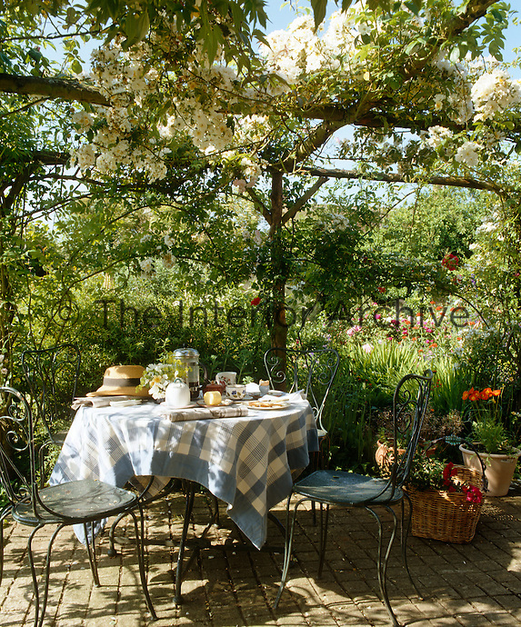 A simple table is laid for breakfast in the garden beneath a trellis overgrown with climbing roses