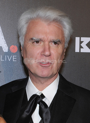 New York, NY- October 30: David Byrne attends Keep a Child Alive's 11Annual Black Ball at Hammerstein Ballroom on October 30, 2014 in New York City. Credit: John Palmer/MediaPunch