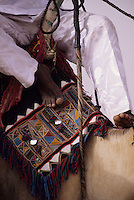In-Gall, near Agadez, Niger - Tuareg Camel Decorations