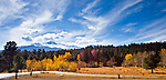 Long's Peak provides the background for fall color in Rocky Mountain National Park, Colorado.