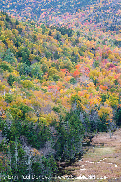 Autumn foliage from the top of Elephants Head in Carroll, New Hampshire. Elephants Head is a rock profile that has excellent views of the Crawford Train Depot area.