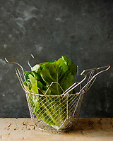Gastronomie générale: La laitue romaine, Lactuca sativa var. longifolia, est une variété de laitue qui pousse avec un cœur ferme et une longue tête de feuilles robustes - Stylisme : Valérie LHOMME  // Romaine or cos lettuce is a variety of Greek Lettuce (Lactuca sativa L. var. longifolia) which grows in a tall head of sturdy leaves with a firm rib down the center.