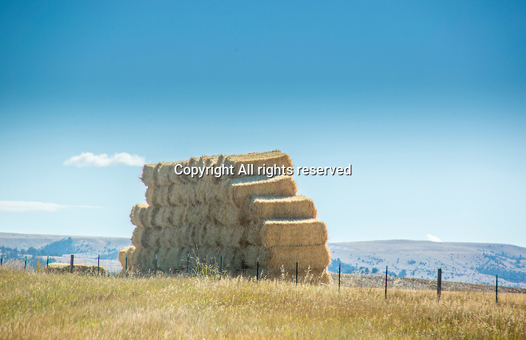 Hay bales are stacked in a field in Montana.