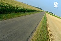 France, Lion en Beauce, straight country road passing wheat and corn fields (Licence this image exclusively with Getty: http://www.gettyimages.com/detail/73532599 )
