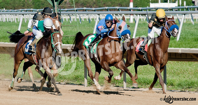 Explosive Heat MHF winning  at Delaware Park on 9/5/13