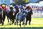 Arinosa Sapphire Stakes 2013
