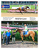 Wild For Love before at Delaware Park on 7/29/15