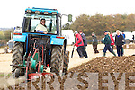 Martina Flynn, Causeway in action during the National Ploughing Championship on Wednesday.