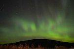 The Northern Lights light an autumn sky in B.C.'s Cariboo country near Wells, B.C.
