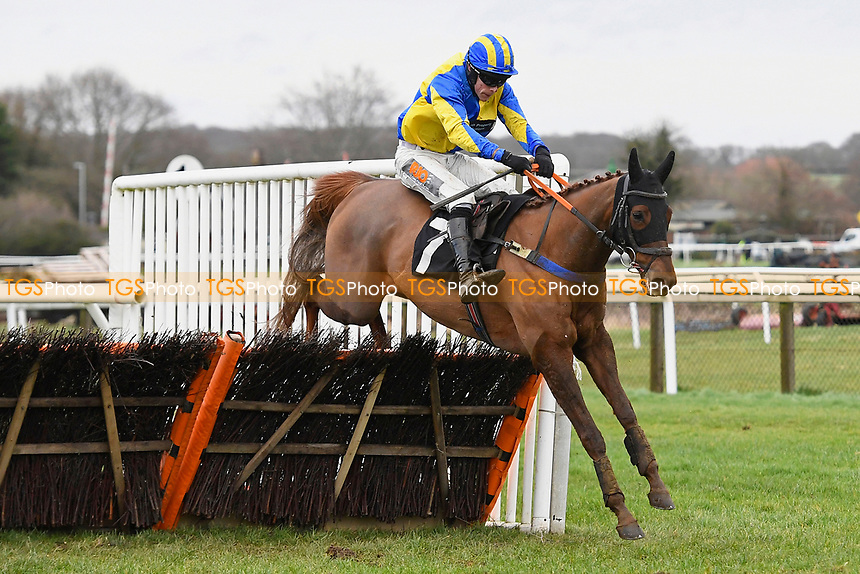 Marmont ridden by James Davies and trained by Jo Davis clears the last in The Extech Cloud-Humanising It Handicap Hurdle during Horse Racing at Plumpton Racecourse on 10th February 2020