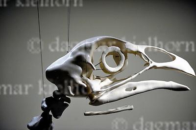 Sept.12-2016,Berlinische Galerie, Berlin,Germany<br /> Berlin Art Week 2016<br />  GASAG Art Prize 2016 to Andreas Greiner<br /> Artwork:The mast cook  &quot;Elenore`s&quot; eye