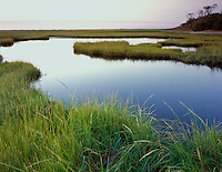 Cape Cod National Seashore, MA<br /> Calm surface of the tide pools at The Moors near Herring Cove beach