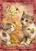 CHIARA,REALISTIC ANIMALS, REALISTISCHE TIERE, ANIMALES REALISTICOS, paintings+++++,USLGCHI61-2,#A#, EVERYDAY ,photos