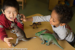 Education Preschool 3 year olds two boys playing with plastic dinosaurs making them roar and interact