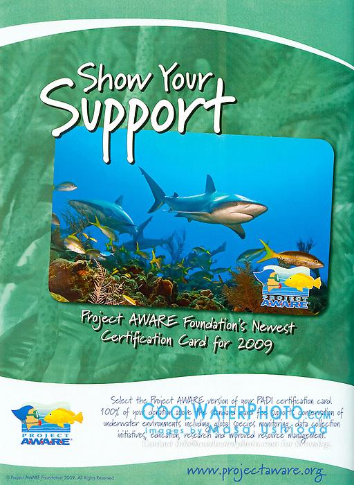 Project AWARE - PADI Certification Card Use, USA, Image ID: Caribbean-Reef-Shark-0026-H