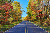 Autumn colors along Skyline Drive