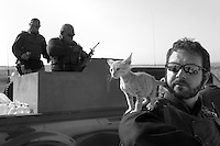 "Private security operator Karl ""Paddy"" Moore from the British company ArmorGroup plays with his adopted kitten ""Convoy Cat"" while team members prepare one of the armoured escort trucks at a convoy staging area near Al Asad air base in north western Iraq on October 18, 2006. Moore is a 35-year-old former Royal Marine from Belfast. The coalition forces and civilian administration in Iraq depend heavily on thousands of controversial security contractors to support their reconstruction efforts and military operations."