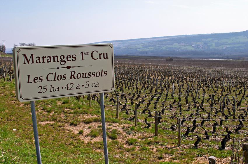 vineyard les clos roussots dezize les maranges santenay cote de beaune burgundy france