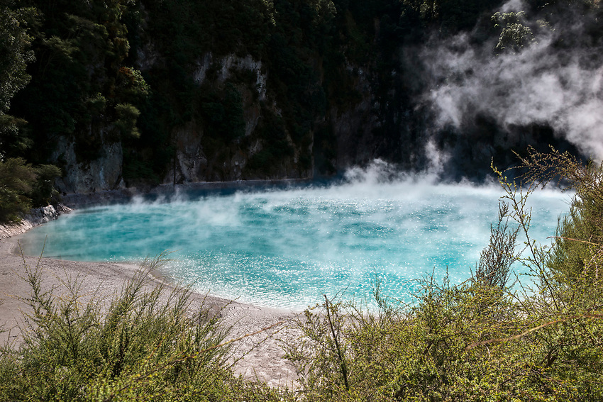 Steaming hot pond of water collected from a hot spring, Waimangu Volcanic Valley, Rotorua