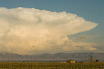 Passing spring afternoon thunderstorm over an abandoned homestead in  the Jornada del Muerto in central New Mexico