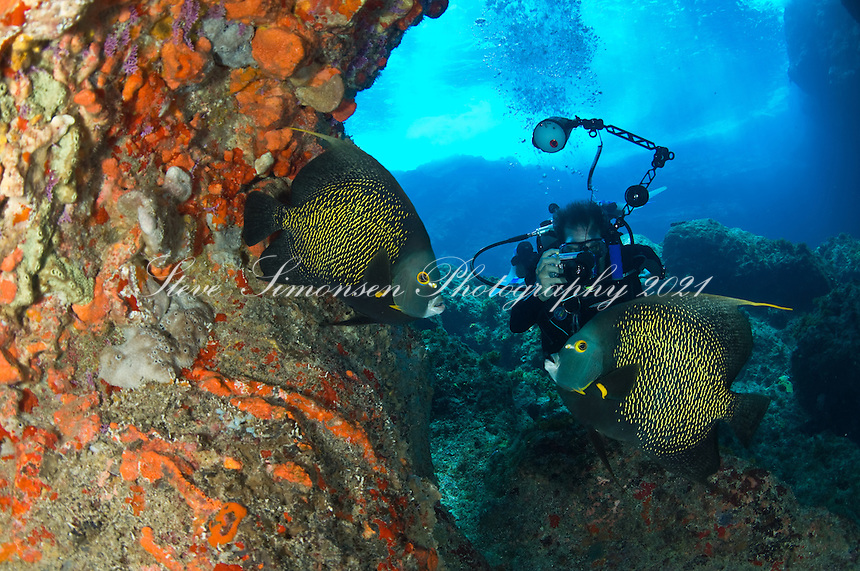 Underwater photographer and french angelfish<br /> Las Cueves, La Queva, Desecheo Island, PR