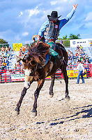 Cowboy competes during Saddle Bronc Riding at 65th year of The Homestead Rodeo, Homestead, FL, on January 26, 2014