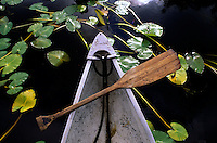 Still life of a canoe, paddle and water lillies on the blackwaters of the Okefenokee Swamp. Established in 1937, the Okefenokee National Wildlife Refuge protects the waters, wilderness and wildlife of the 438,000-acre Okefenokee Swamp.