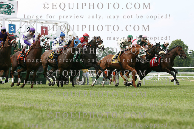 Thoroughbred action at Monmouth Park in Oceanport, New Jersey.