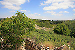 Israel, Upper Galilee. The ruins of Kfar Biram