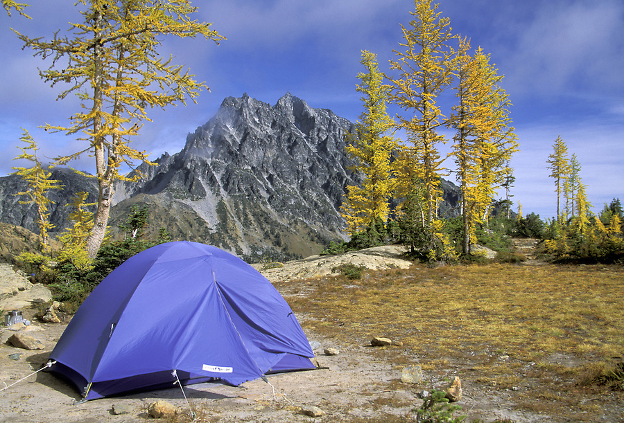 Tent in campsite, Lake Ingalls, Alpine Lakes Wilderness, Wenatchee National Forest, Cascade Mountains, Washington