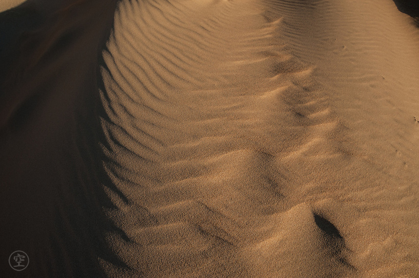 Patterns of light and dark make an abstract landscape on a beach sand dune in the afternoon light.