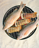 USA, Florida, cooking fish and lobster tails on grill, close-up, Islamorada