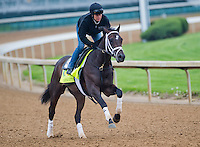 Charming Kitten, trained by Todd Pletcher, works out in preparation for the Kentucky Derby at Churchill Downs on April 29, 2013.