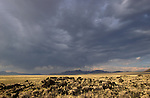 Stormy sky over the Black Rock Lava Flow in Nevada's Big Sand Spring Valley.
